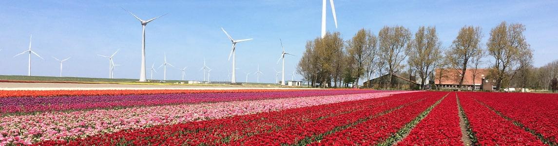 Ferienparks in Flevoland