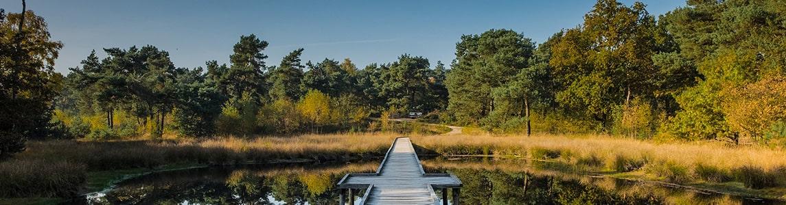 Ferienparks in Limburg (Niederlande / Holland)