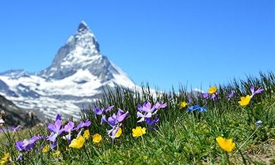 Sommer in den Bergen jetzt bis zu 30% günstiger